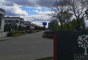 Niewierni małżonkowie w gminie Dopiewo-28