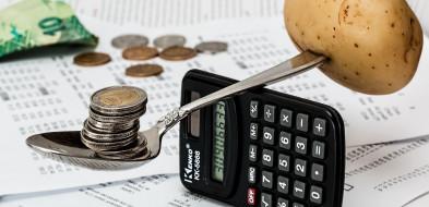Zatwierdzenie budżetu Gminy Dopiewo za rok 2020-1068